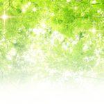 癒し効果抜群【陶器のアロマポットづくり】